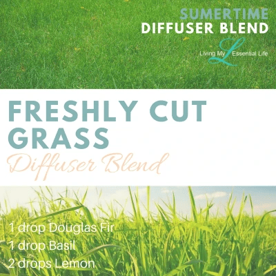 If you love the smell of freshly cut grass then try this essential oil diffuser blend.
