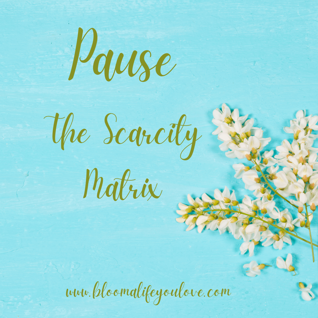 Pause--The Scarcity Matrix