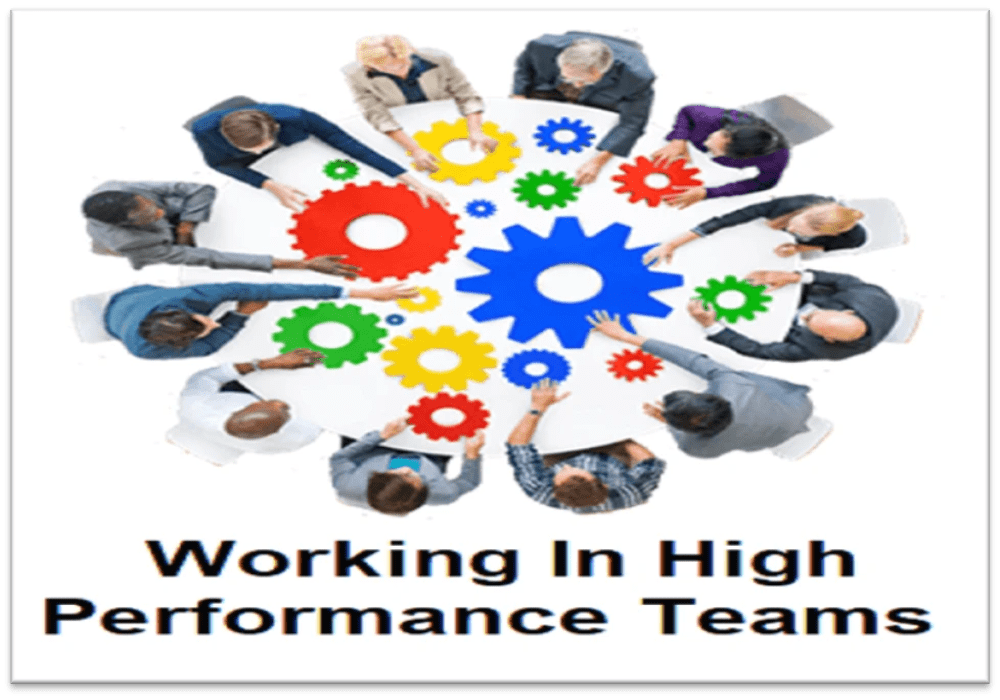Dr. Tina Talks Work - Working in High Performance Teams, Soft Skills Development