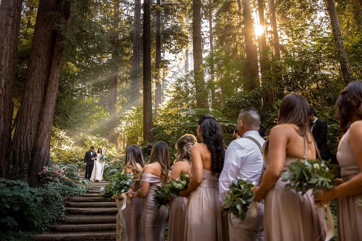 Bride and groom walking down stairs in the forest, sun rays shining on them. The bridal party looks up at the newlyweds.