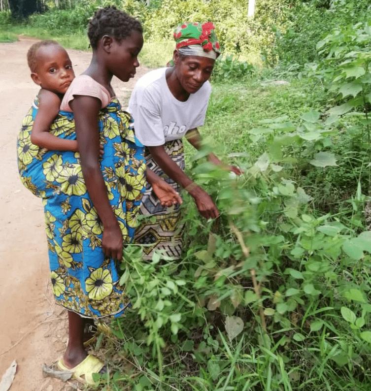 Photo : Koundo Sotale et sa fille,  Meyi logina et sa petite fille Nzele. Autochtones de l'ethnie Mbenzele. Bomasa - Département de la Likouala (Frontière avec le Cameroun). Auteur : Mayomb' / Massein Pethas