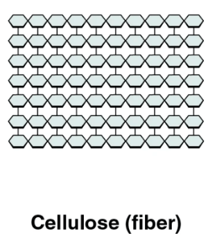 The image shows the structure of cellulose.
