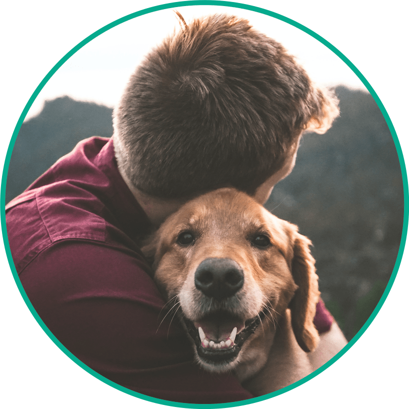 Online vet chats and video calls with  KeepPet anytime anywhere!