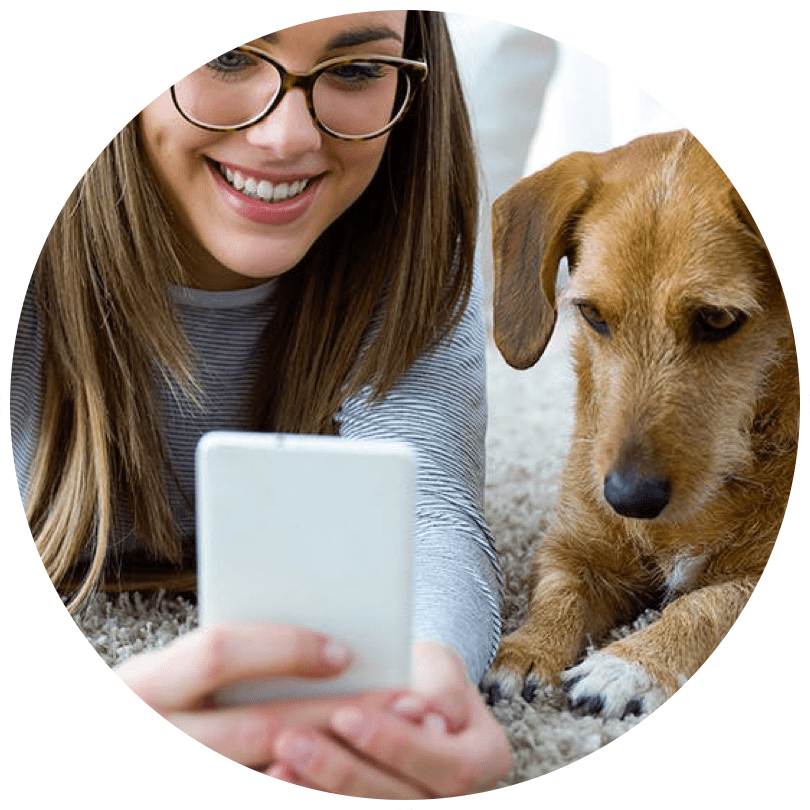 Ask vet any questions about your pet health via online chat or video call in KeepPet app