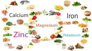 Nutrients In Human, Different Food Sources, Biology , Biology