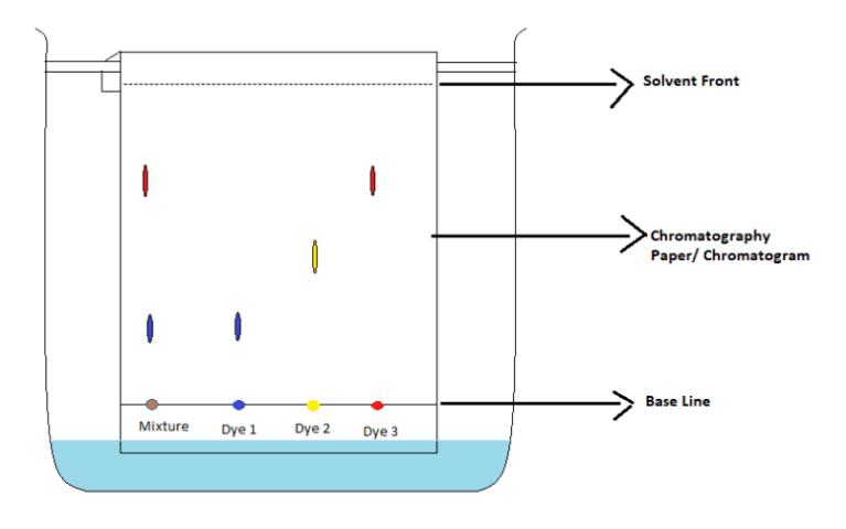 Chem - Paper Chromatography