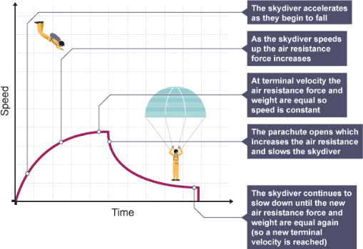 step i  all objects near the surface of the earth experience a  gravitational acceleration of 9 8m/s2  the skydiver is not an exception,  and the skydiver