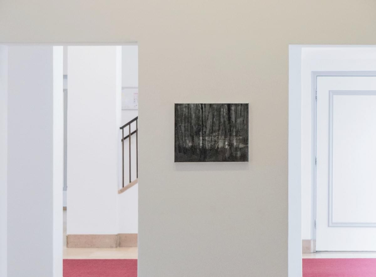 Schilderij- painting - Harm van den Berg - Installation view: Vista, 2015, 40 x 50 cm, oil / acrylic on linen