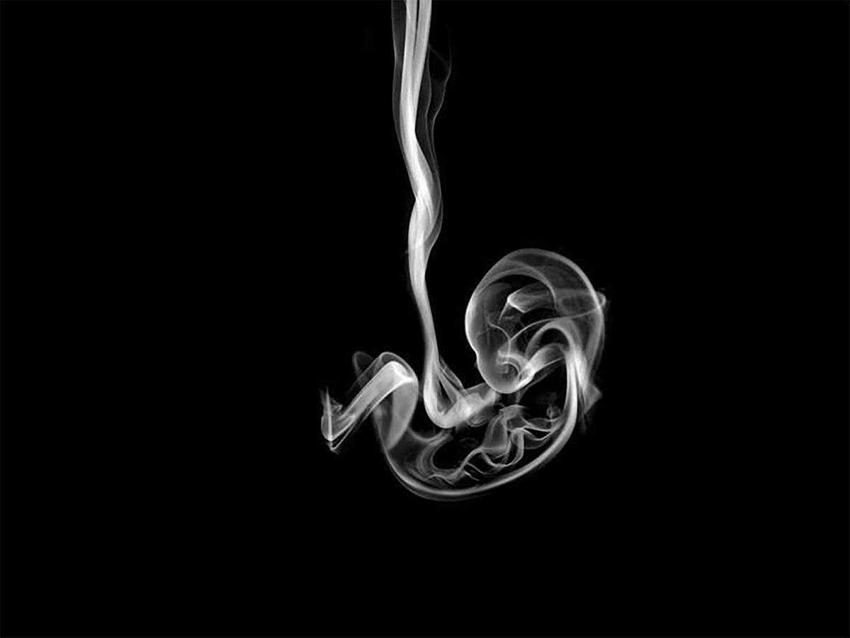 On a black background, a foetus has been created out of cigarette smoke. It forces a connection between maternal smoking and foetal vulnerability