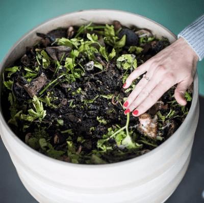 WormUp ACADEMY Schulung Wurmkompostierschulung