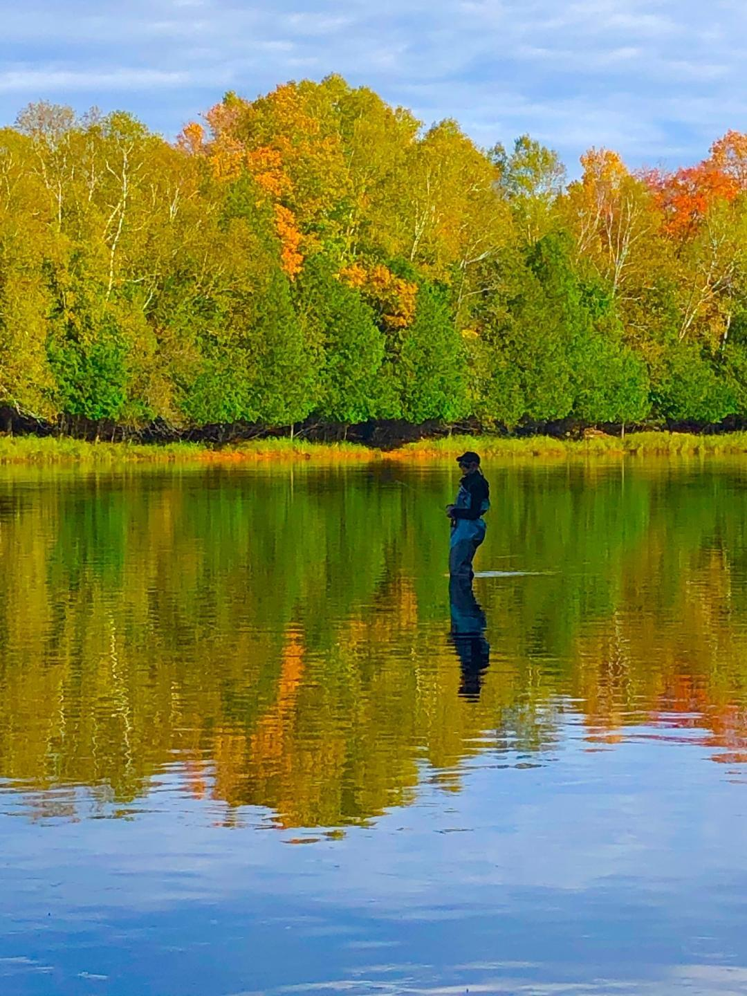 upper peninsula fly fishing in the fall