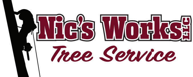 Tree Service Fifty Lakes