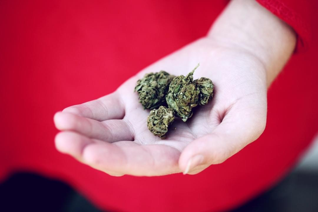 Reasons You Should Buy Cannabis from an Online Dispensary