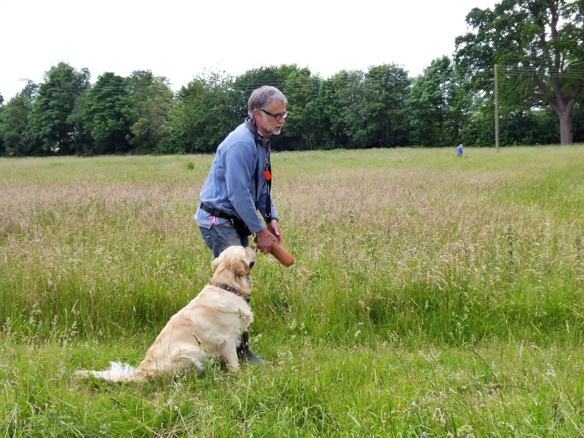 CD Dog Training Wymondham Gun Dog courses