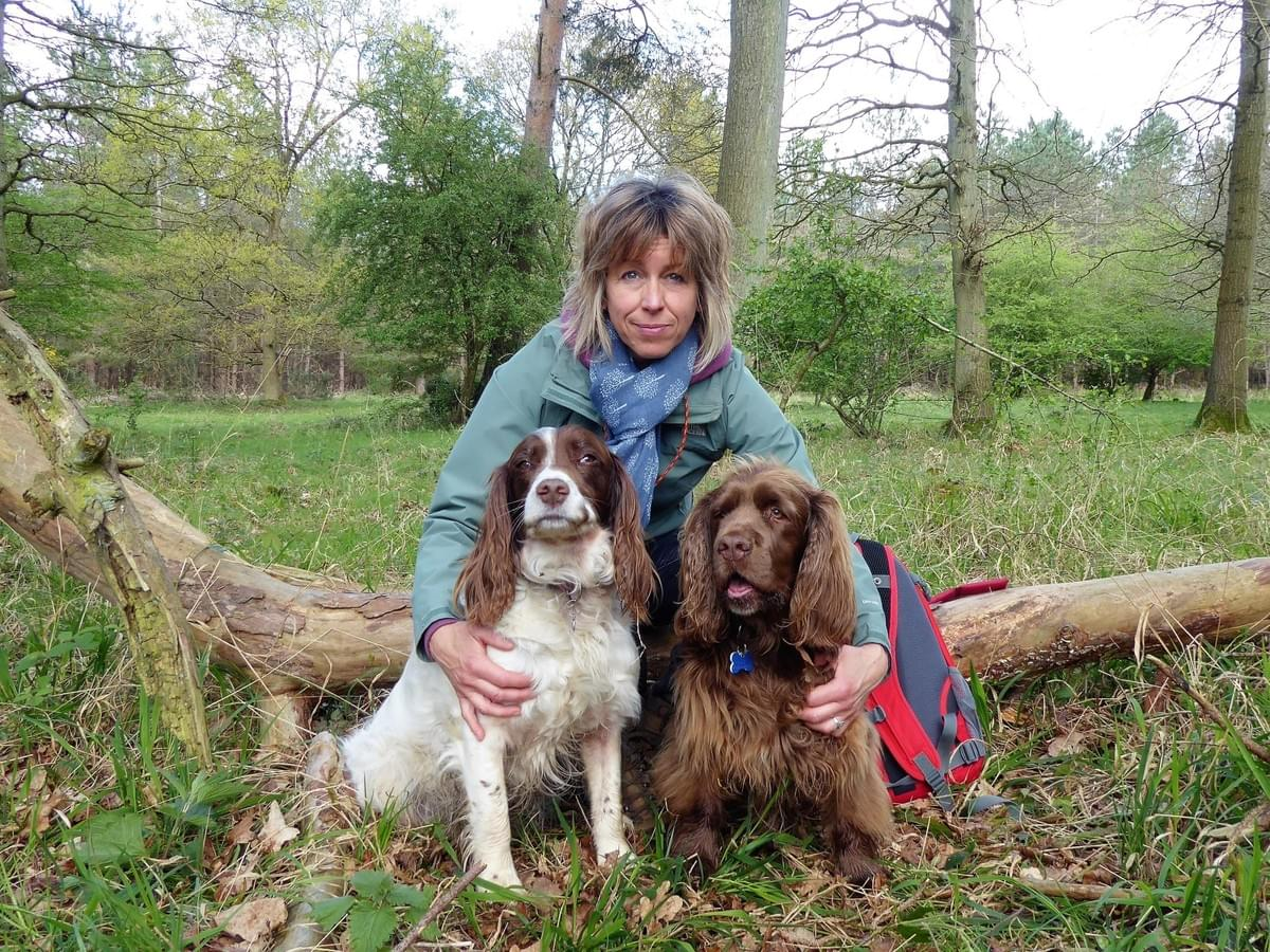 CD Dog training Wymondham