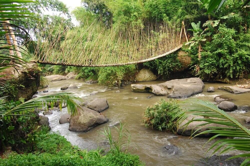 Bamboo Bridge over the Ayung River
