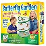 Educational toys for children butterfly garden nature lovers
