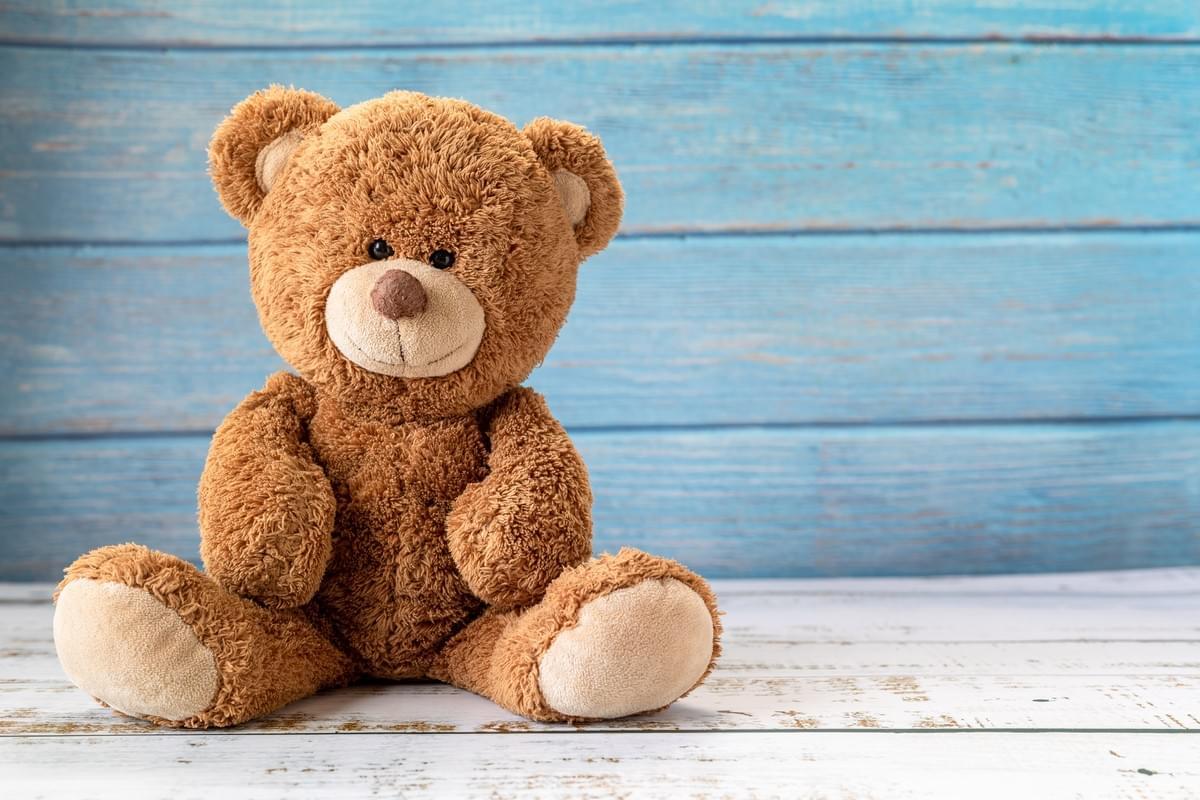 Giant teddy bear: Our bestbuddies