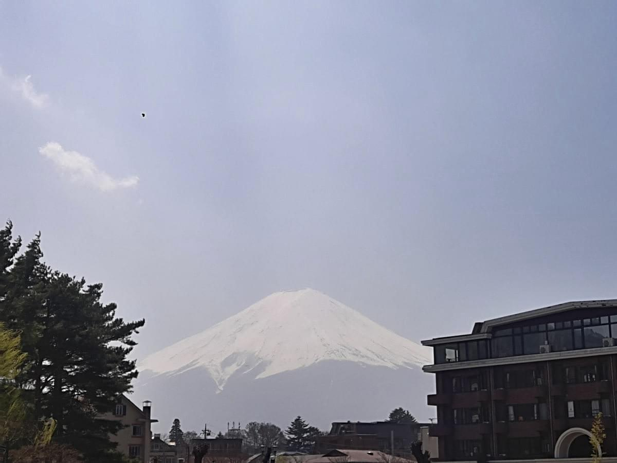 The Mighty Mt. Fuji