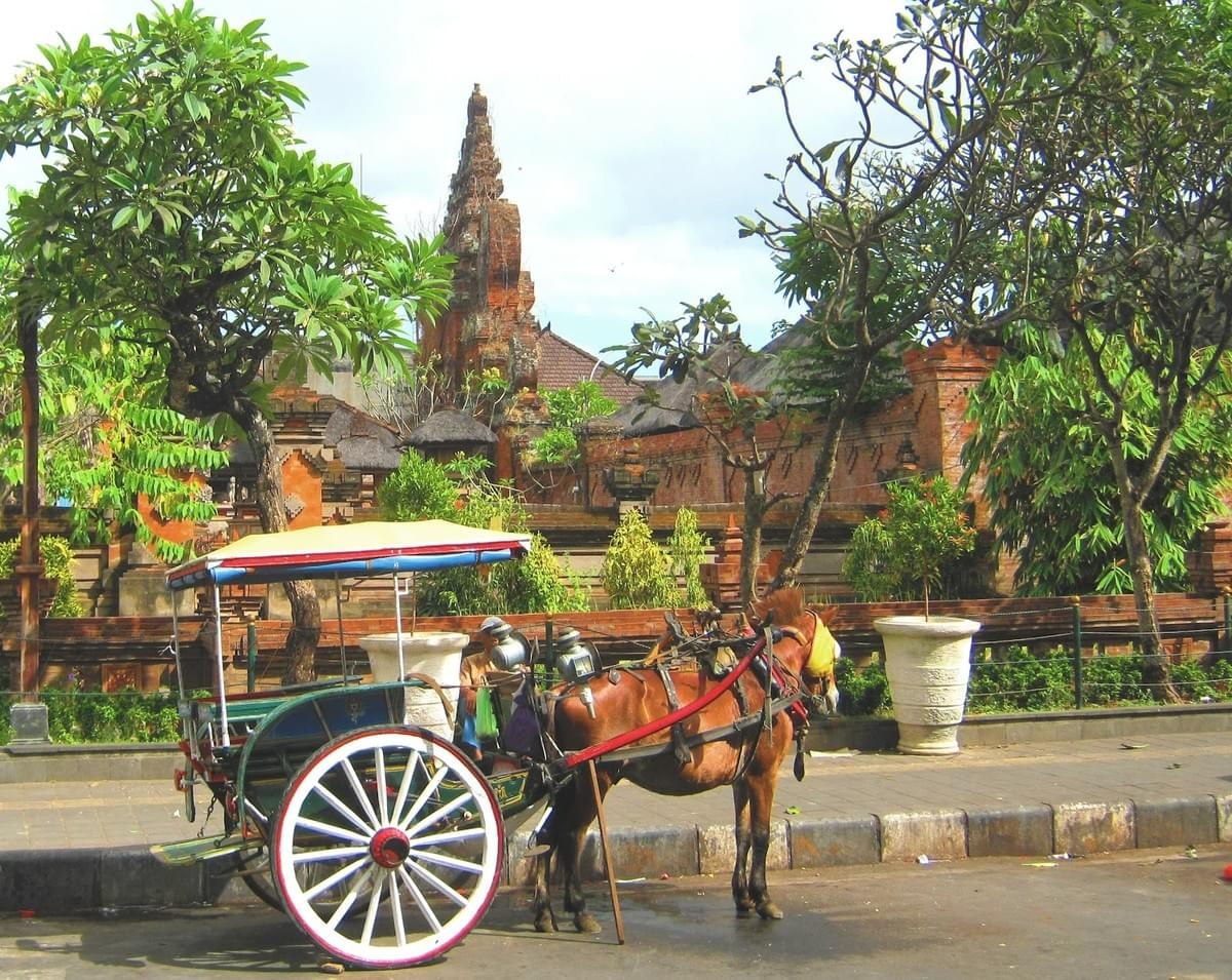 Dokar, Transportation in Bali