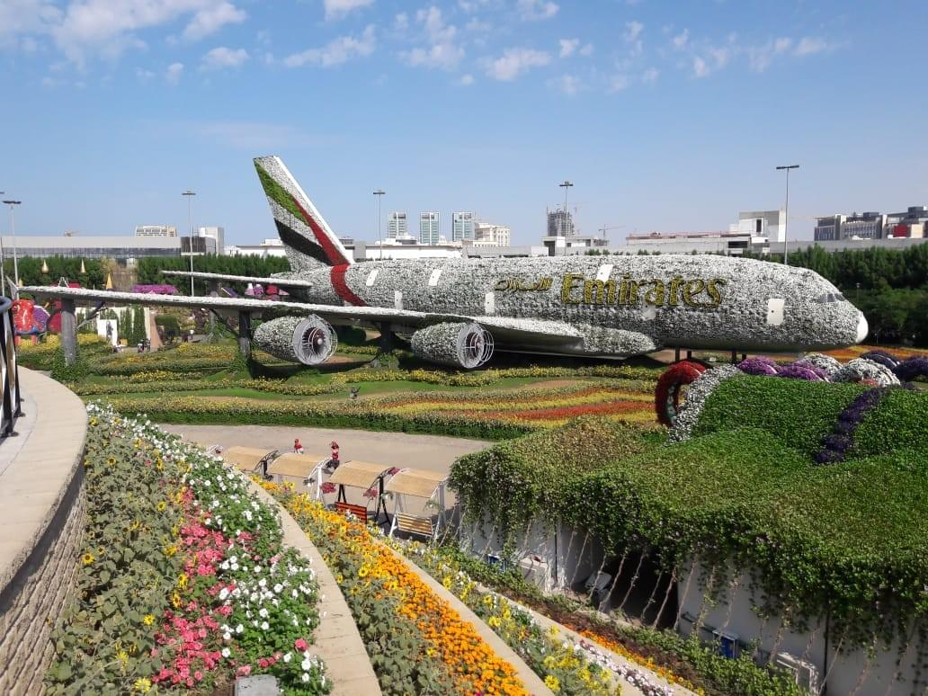 Miracle Garden - Places to Visit in Dubai