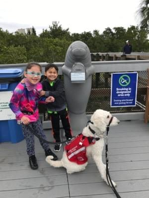 Petie, Bella and Kadence at the Manatee Conservation Area in Florida.