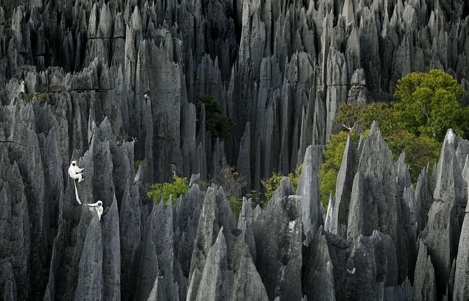 The Tsingy, eroded limestone wilderness in Madagascar