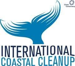international coastal clean up