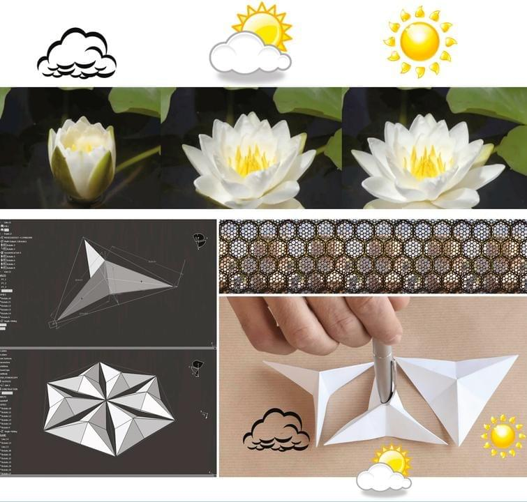 Origami Four Seasons – VIERECK VERLAG | 720x755