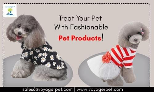 Perfect Pet Products