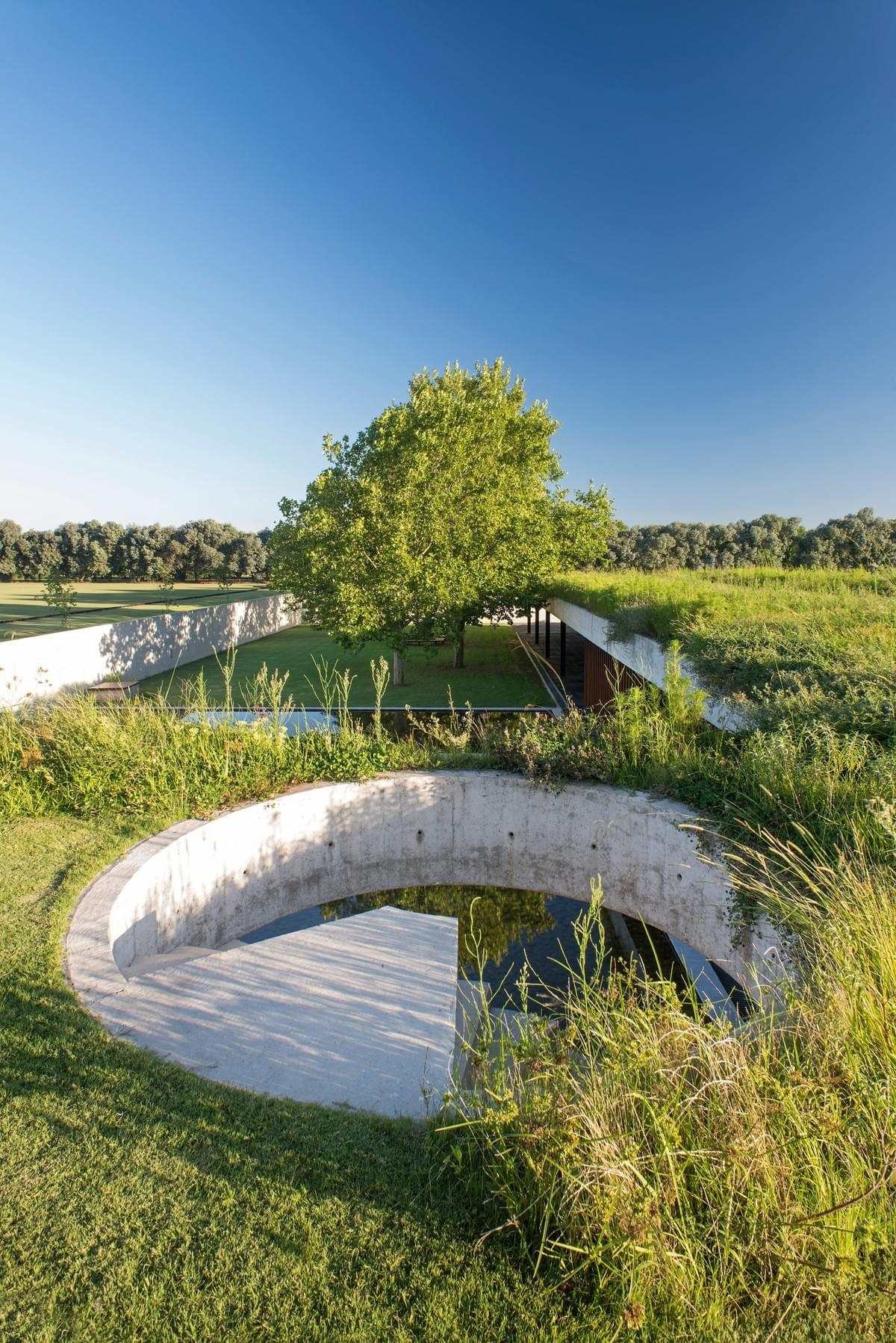 Stunning concrete stables features grassy roof for horses to graze Estudio Ramos