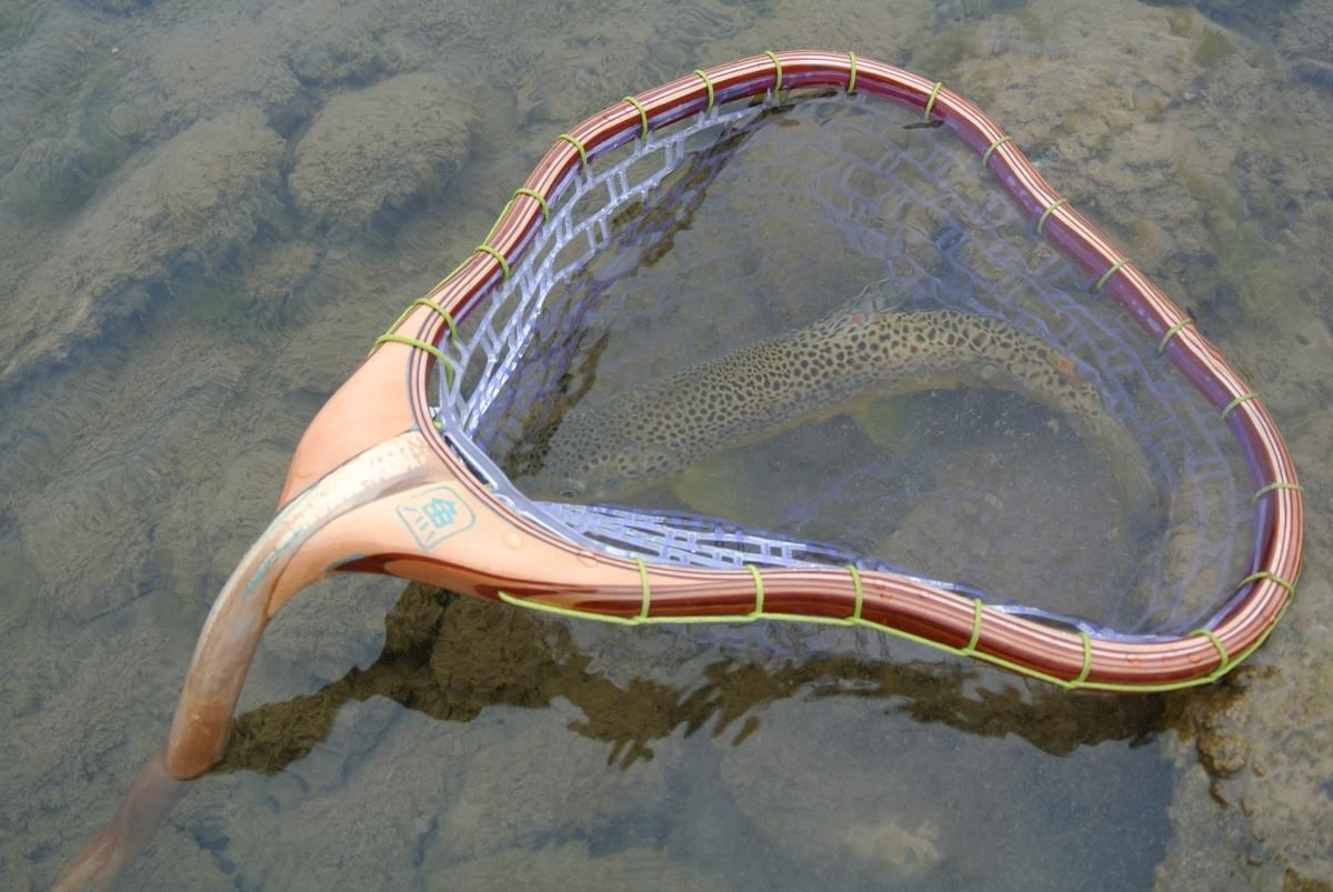 Smallfish Fallen Timber Fly-fishing net with a brown trout