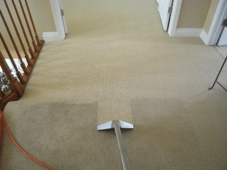 Carpet Cleaning In East Sussex