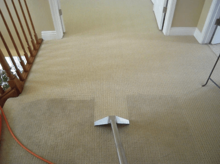 Carpet Cleaning In Hailsham