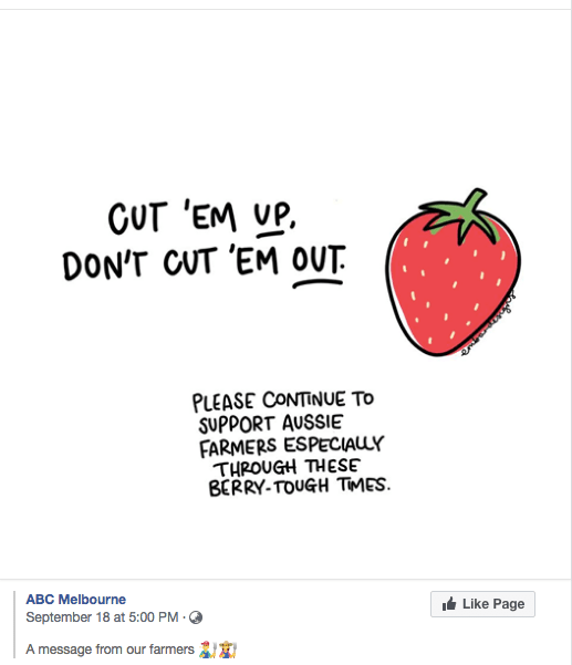 strawberry farmers post ABC
