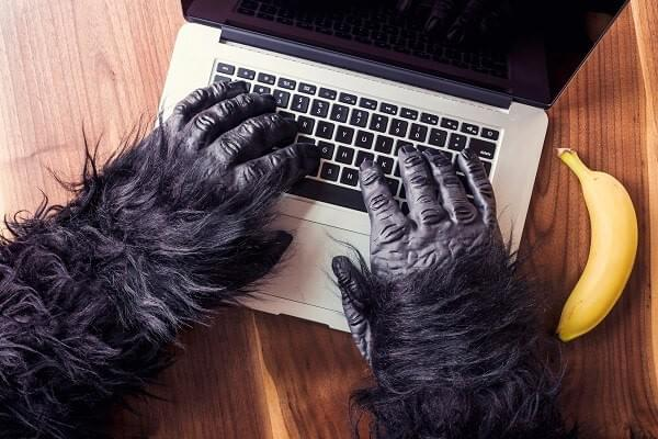 A powerful gorilla is working on a laptop. A banana sits next to the computer symbolizing the need for stimulus and inspiration to perform creative tasks.