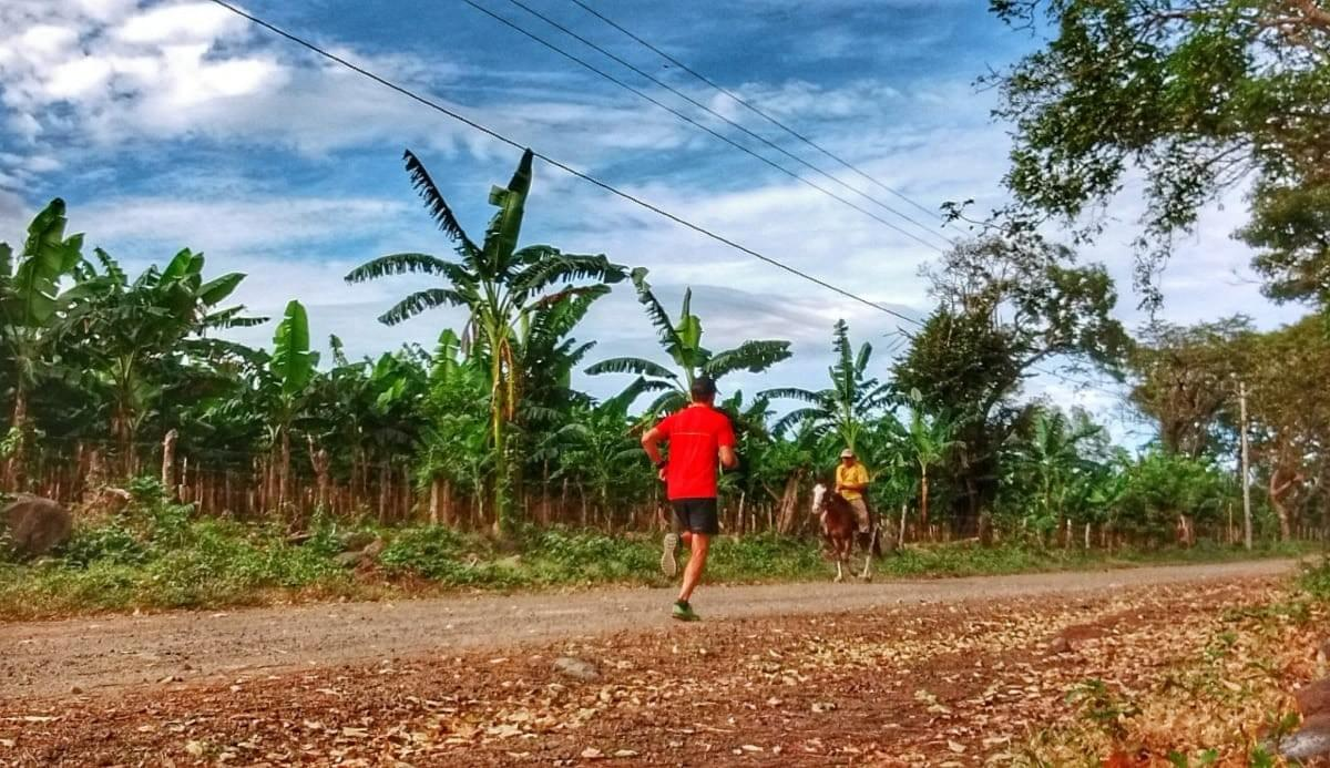 Passing a banana plantation and man riding his horse during a morning training run on Ometepe