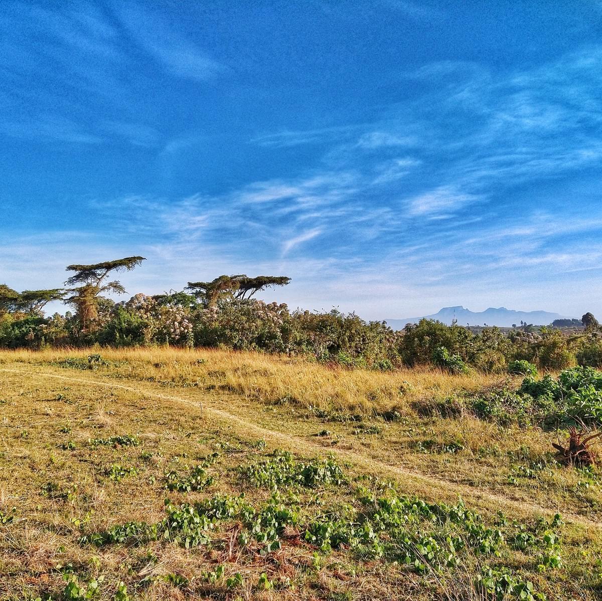 Running the Ugandan Way - Part 1 - uganda ugandan runners running training diaries training programme