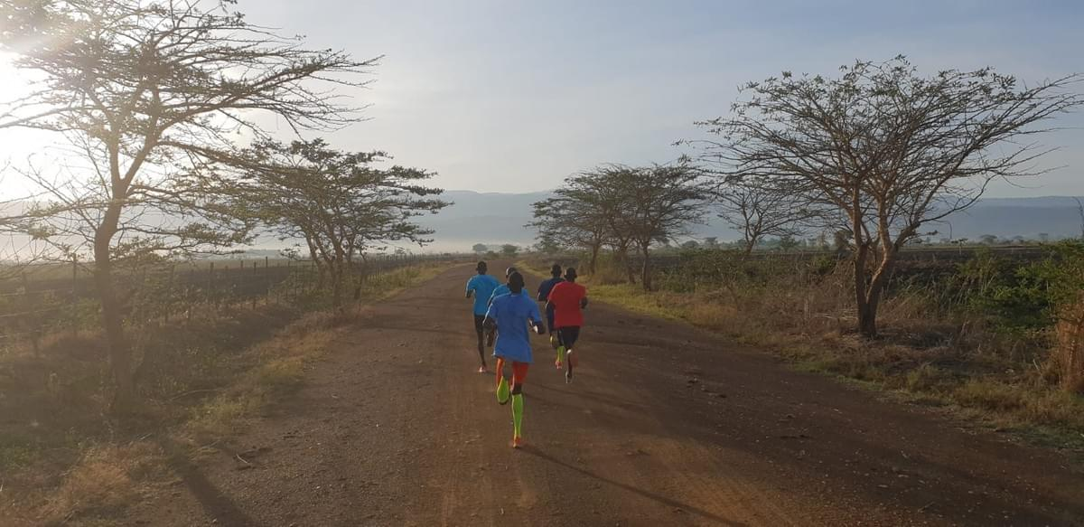 Athletes from the Joshua Cheptegei training group run through trees during fartlek session on the plateau in eastern Uganda