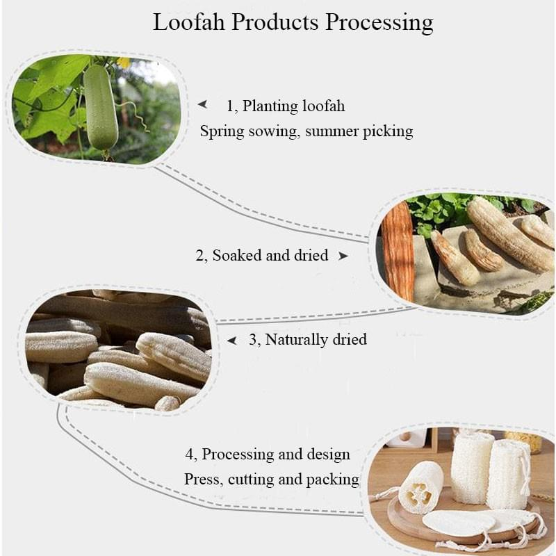 Loofah Sponges 100 % Natural