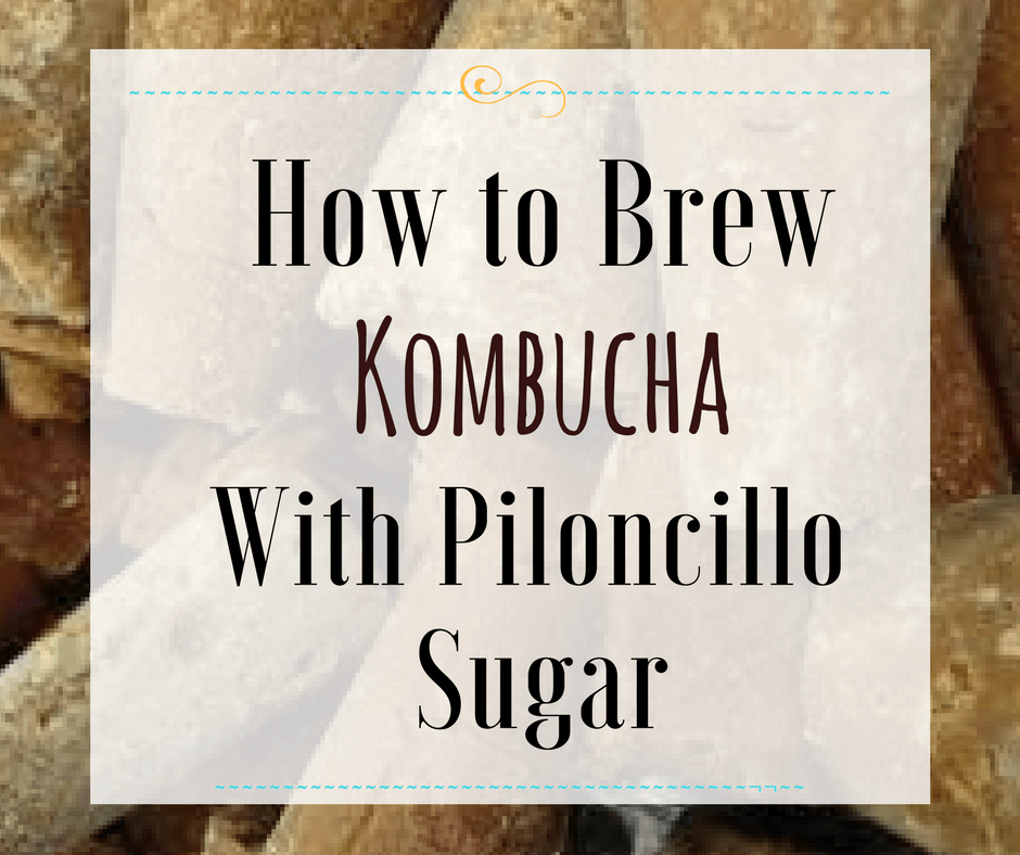 Brew Kombucha with Piloncillo