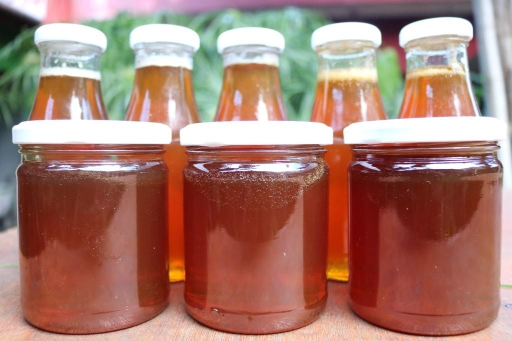 Melipona Honey