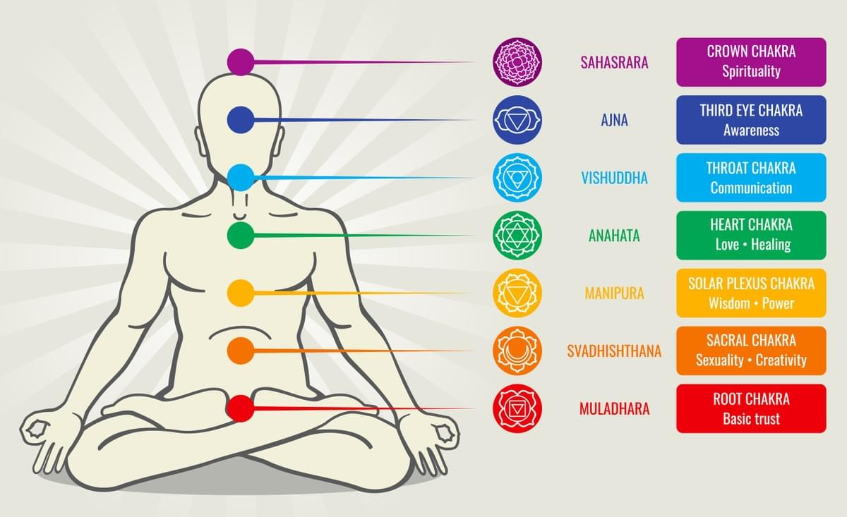 The 7 Chakras Illustration