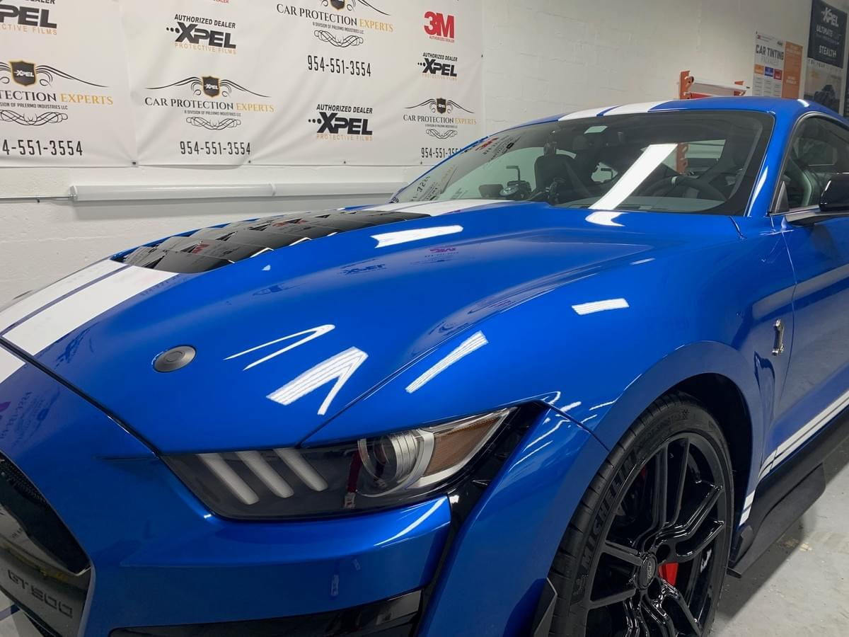 Shelby Mustang Xpel Stealth Wrap Installers, Xpel Ultimate Plus Clear Wrap Film Installer serving all of Broward county, Fort Lauderdale, Ft Lauderdale, Pompano Beach, Plantation, Lauderhill, Hillsboro Beach, Deerfield Beach, Weston, Aventura, Sunny Isles Beach, Davie, Dania Beach, Sunrise, Parkland, Boca Raton, Pembroke Pines, Miramar, Hallandale Beach and Hollywood Florida areas..