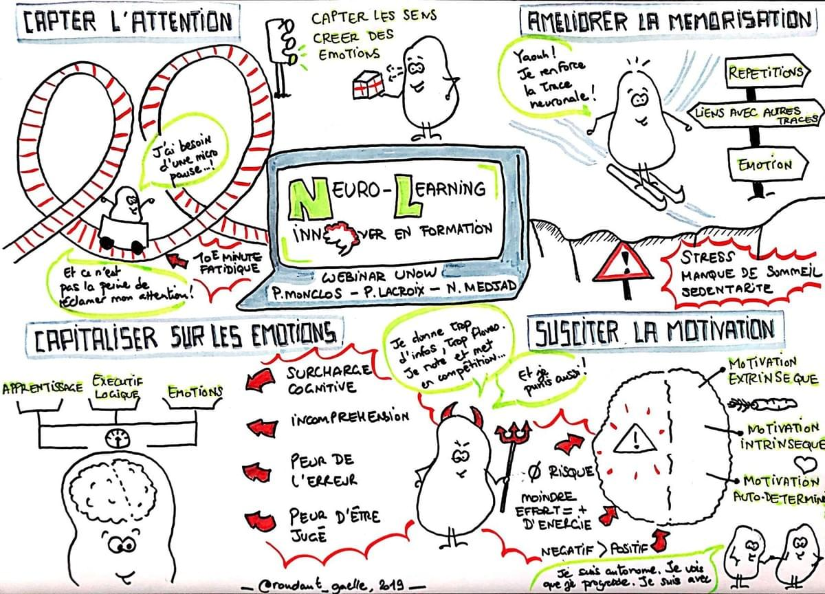 Sketchnote Neuro-learning by Unow et Dr Nadia Medjad - Gaelle Roudaut