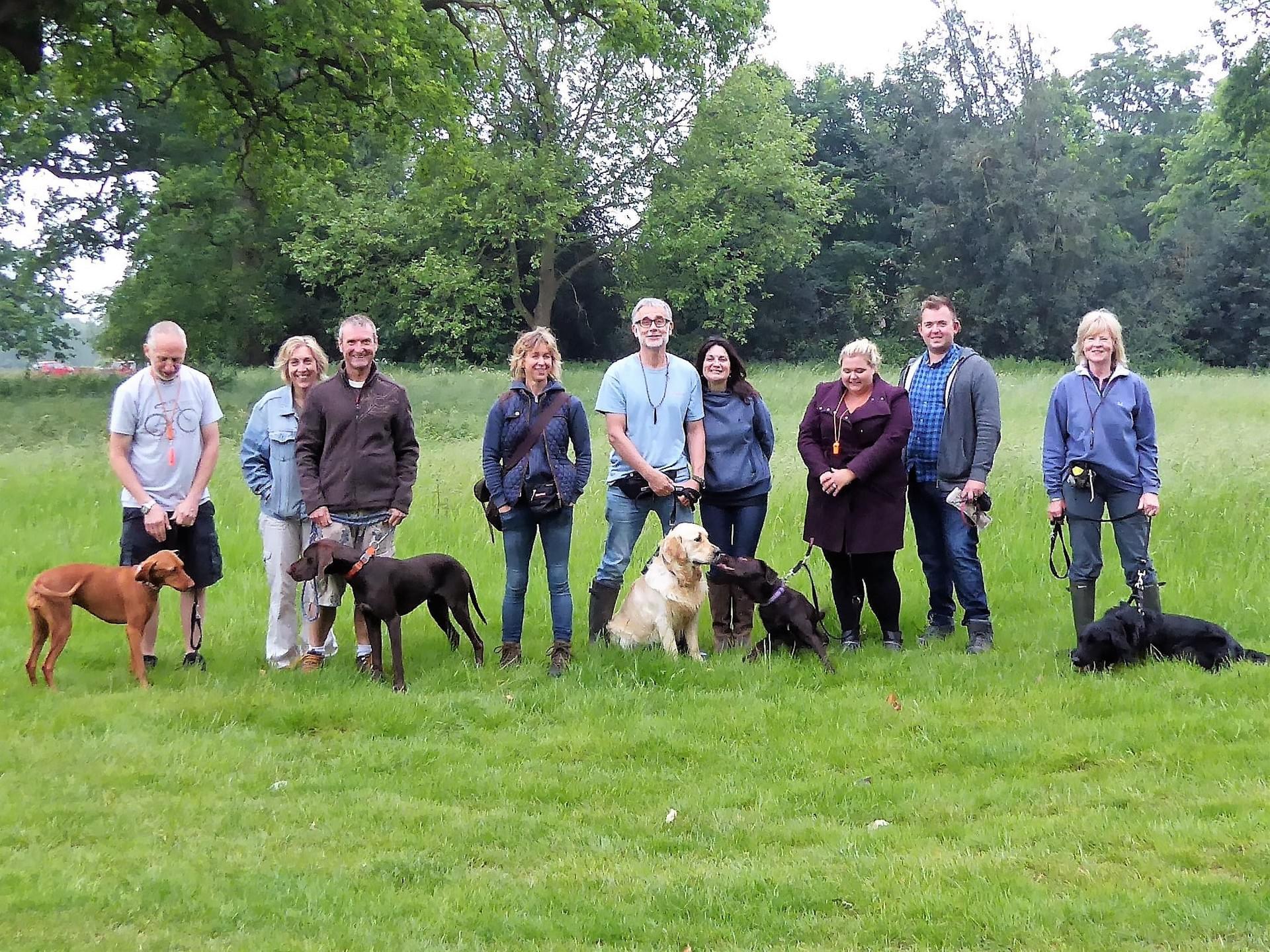 CD Dog Training-professional and fun dog training in Wymondham