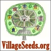 Village Seeds Possibility Management