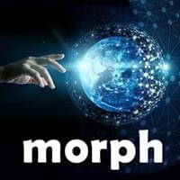 Morph Possibility Management