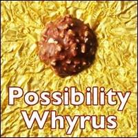 Possibility Whyrus Possibility Management