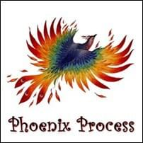 Phoenix Process Possibility Management